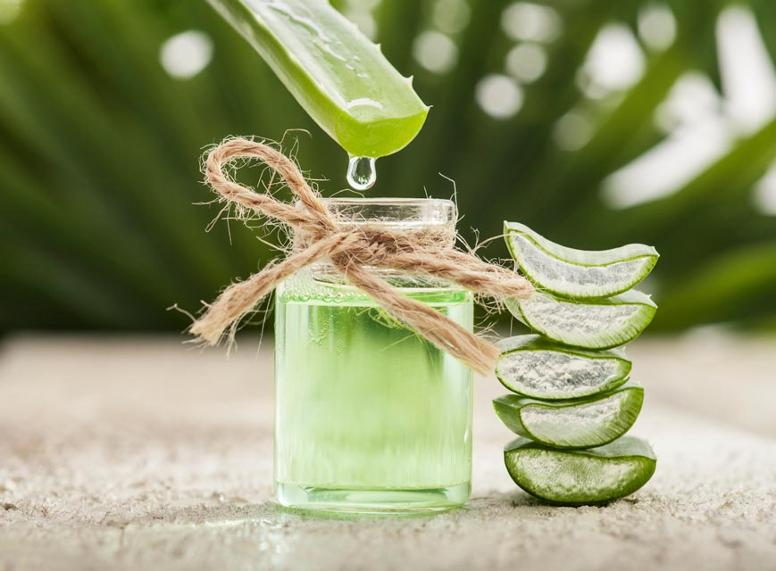 Aloe juice may help regrow hair.